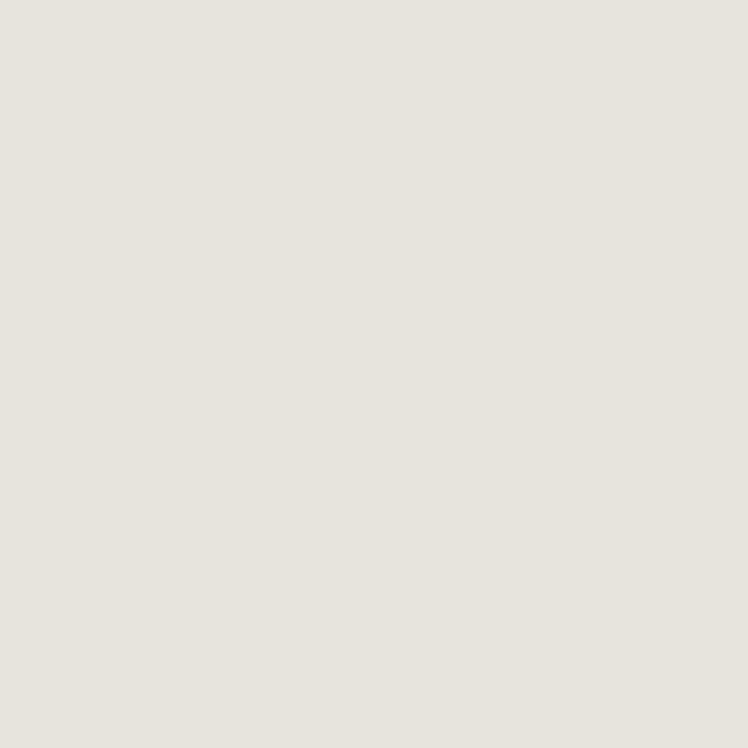 Pigment - Chalky White - 7903 -