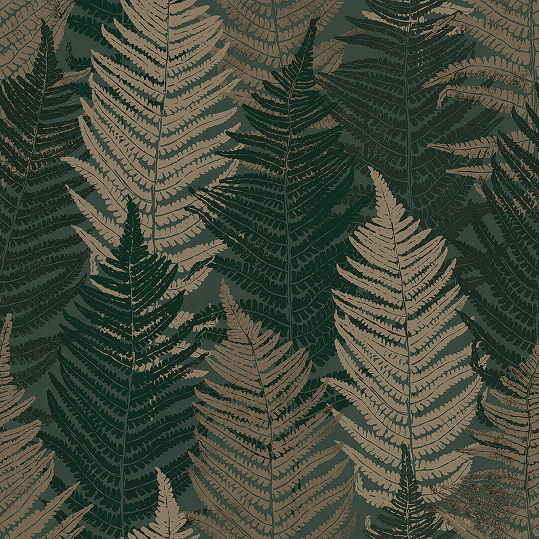 Everyday Moments - Fern Forest - 1164 -