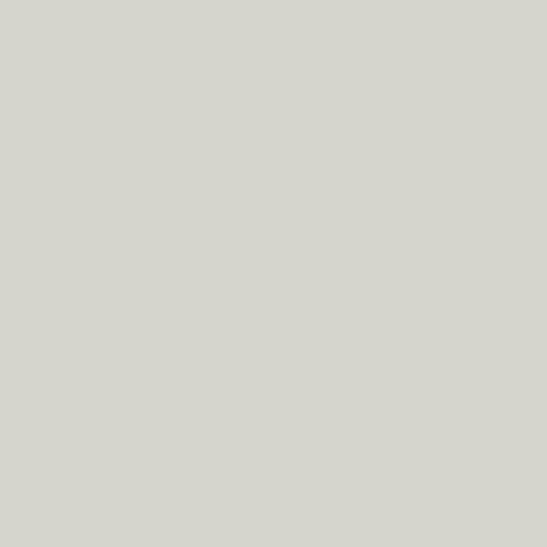 Pigment - Grey Feather - 7952 -