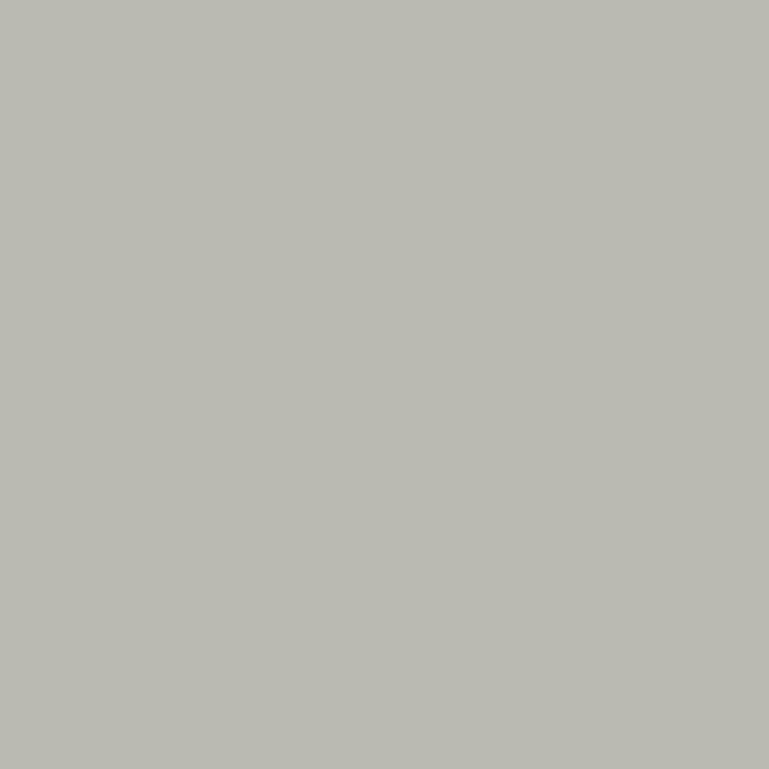 Pigment - Smoked Pearl - 7954 -